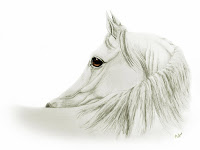 equine art, equestrian artworks, arabian horse drawing