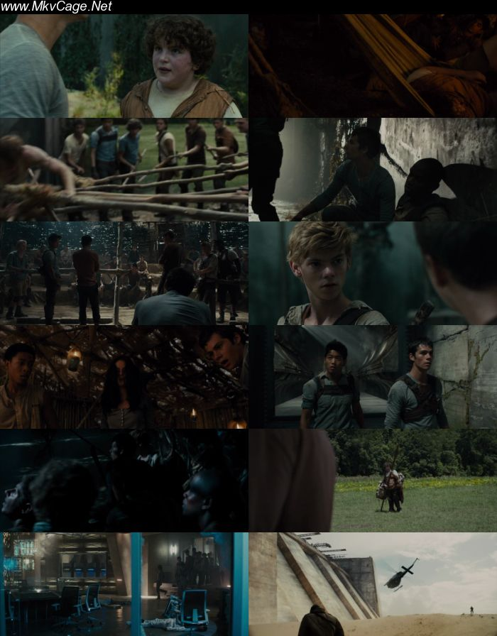 the maze runner 2014 hindi dubbed download 480p