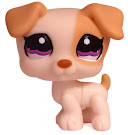 Littlest Pet Shop Multi Pack Jack Russell (#1110) Pet