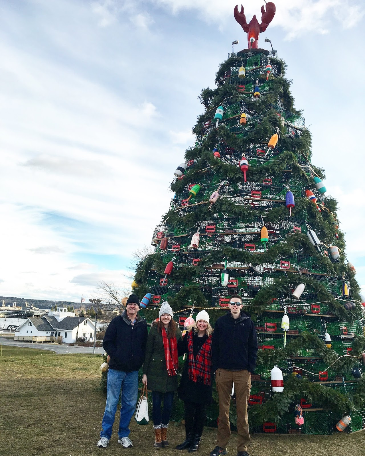 Wonderful Life Farm: Christmas Doings at our Home