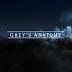 Crítica   Grey's Anatomy - 13x20: In the Air Tonight