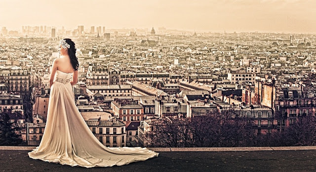 view of the city of paris