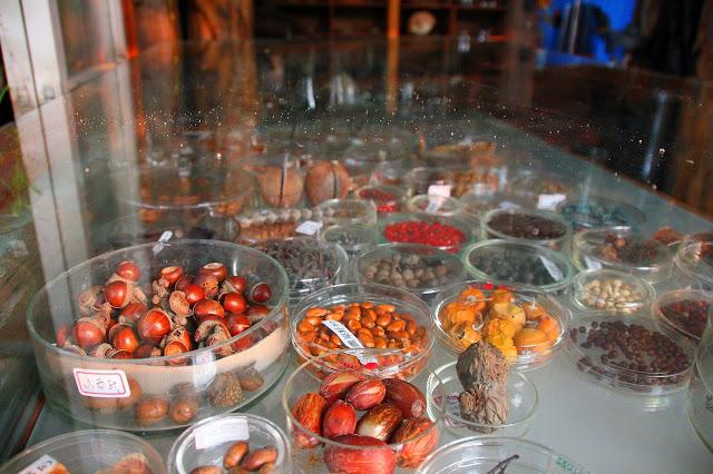 台南千畦種子博物館