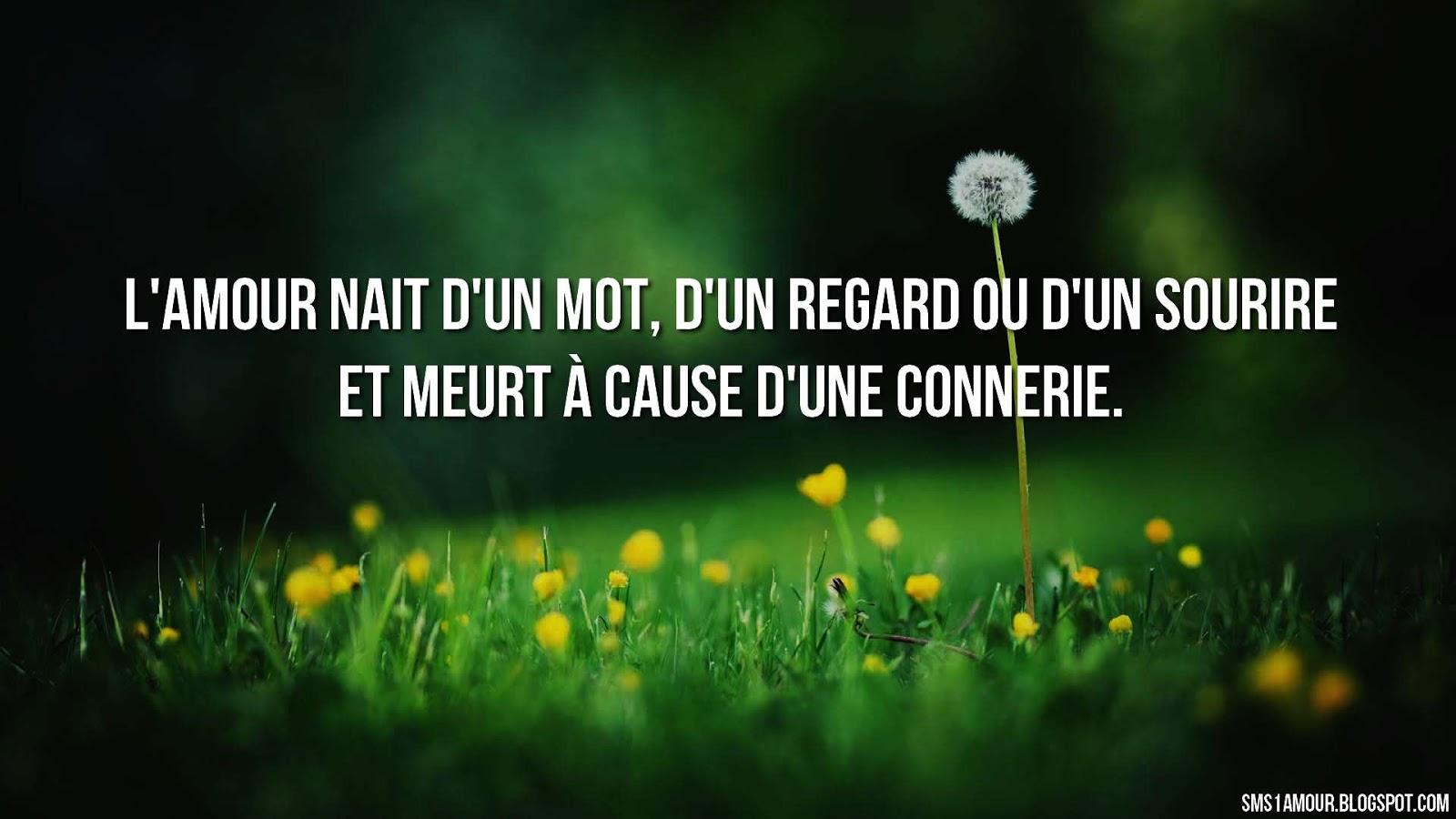 Berühmt Les Meilleurs phrase d'amour ~ message d'amour : Messages et SMS d  PS49