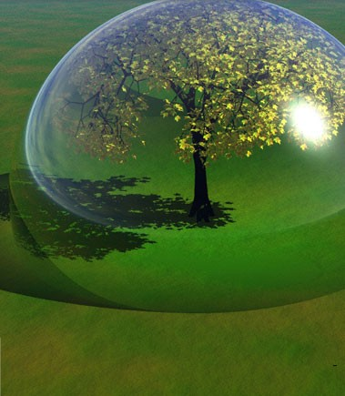 Frases Sobre El Cuidado Del Medio Ambiente Ideas Verdes