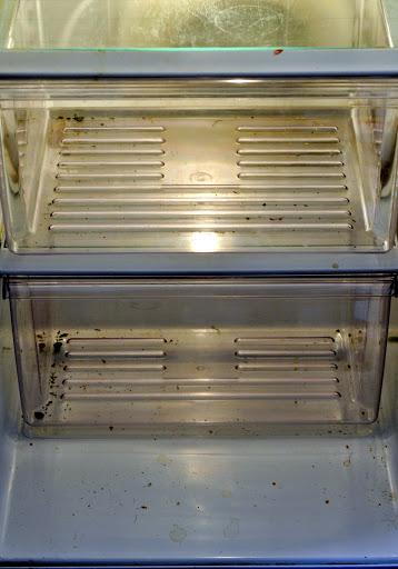 Refrigerator-Before-Deep-Cleaning-tasteasyougo.com