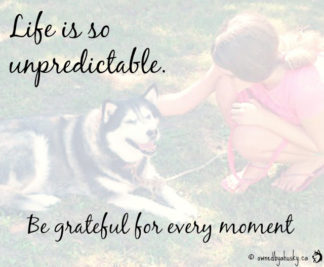 Life Is Unpredictable #BeGrateful quote