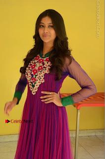 Actress Pooja Jhaveri Latest Stills in Purple Salwar Kameezt at Dwaraka Success Meet  0082.JPG