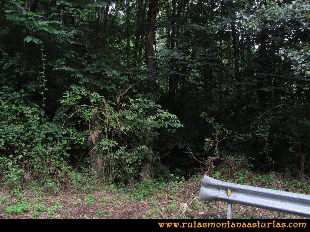 Ruta Cascadas Guanga, Castiello, el Oso: Entrada en el sendero que abandona la carretera
