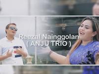 Lirik dan Chord Kunci Gitar RADE DO AU Lely Tanjung Ft. Reezal