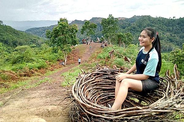 Malaysia Bird Nest Sabah