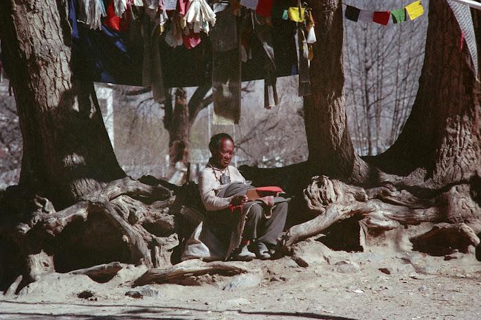 Tibet, Lhassa, Potala, © L. Gigout, 1990