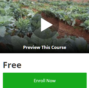 udemy-coupon-codes-100-off-free-online-courses-promo-code-discounts-2017-organicgardeningtrainingcntr-organics4orphans
