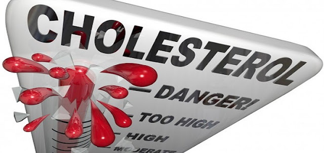 37 Types of Foods That Can Lower High Cholesterol with Super Fast