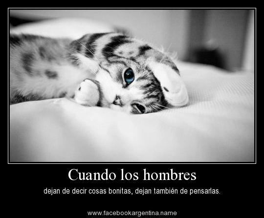 Imagenes De Frases Bonitas: Mustang@: FRASE BONITAS