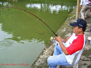 Testimoni Master Essen Katilayu Ikan Mas