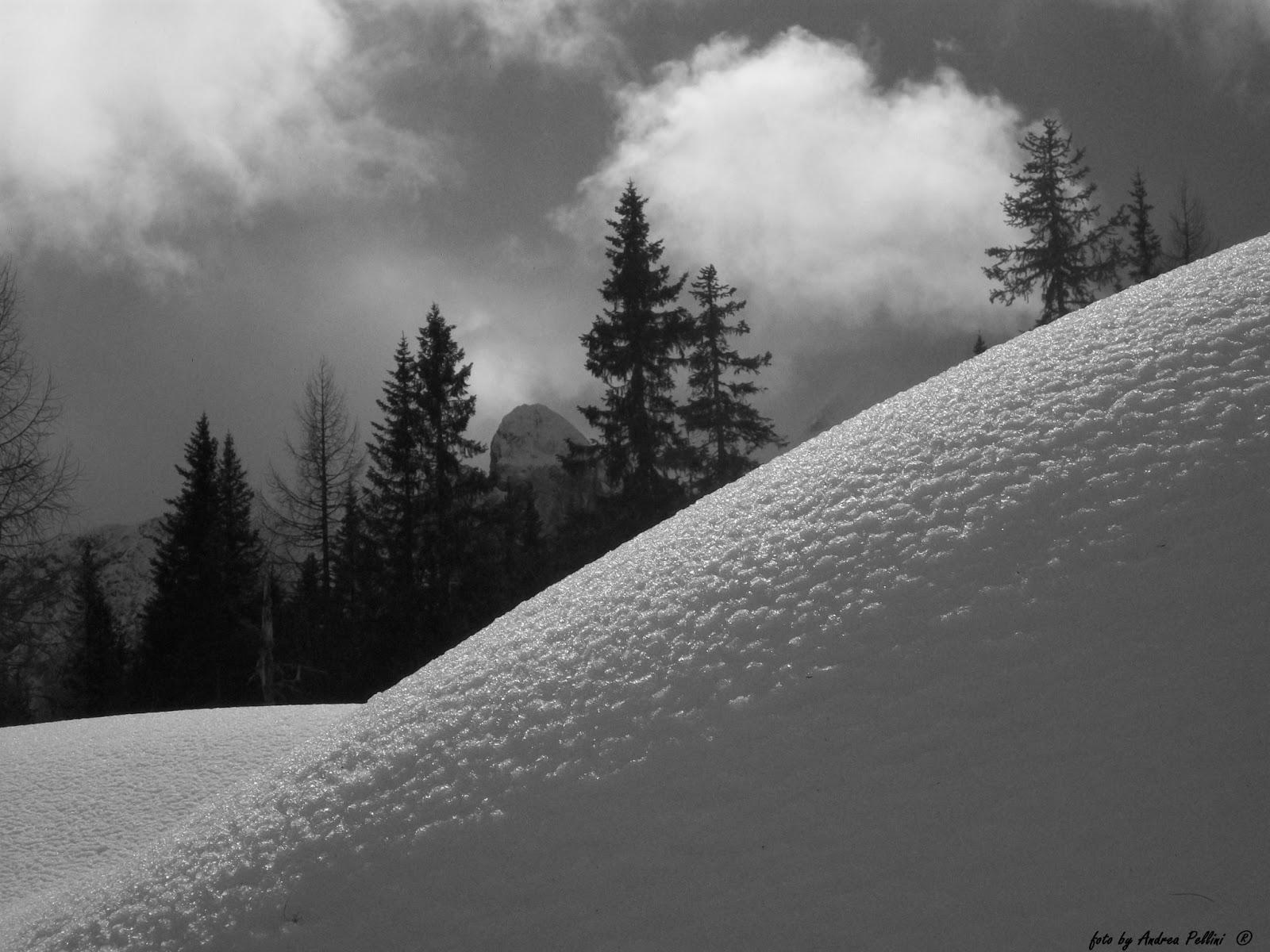 Una Montagna Di Foto Marzo 2013