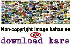 Free stock image kahan se download kare