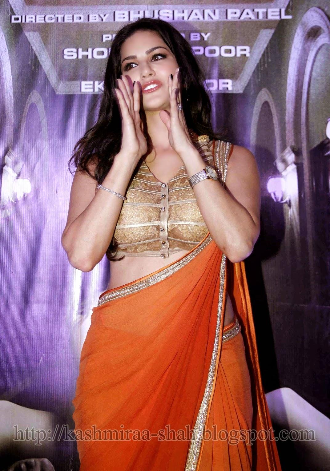 Kashmira Shah Sany Liyon Hot Image  Sunny Leone Hot-6884