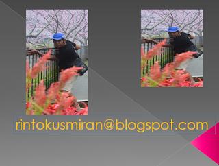 rintokusmiran.blogspot.com