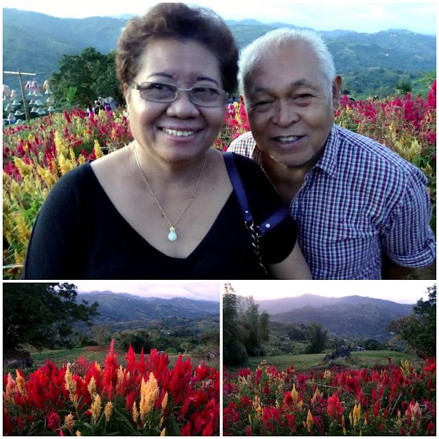 Sirao Flower Garden in Busay, Cebu, Philippines