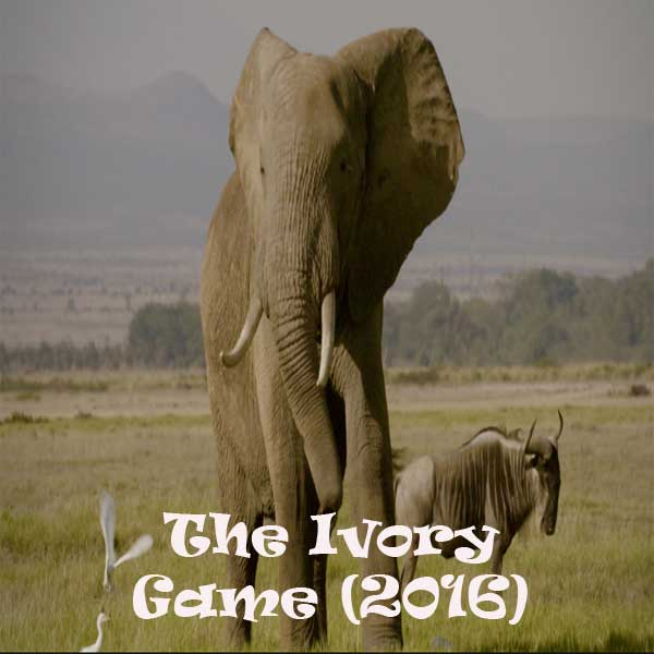 b8d2dd9b6f13ff The Ivory Game (2016) - Film
