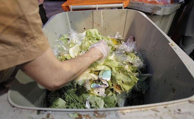 Banco Mundial: México despilfarra 34 % de su producción alimentaria