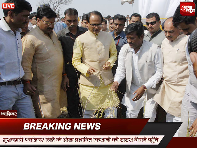 cm-arrived-in-Gwalior-district-hailstorm-affected-farmers-regain-composure-मुख्यमंत्री ग्वालियर जिले के ओला प्रभावित किसानों को ढांढ़स बंधाने पहुँचे