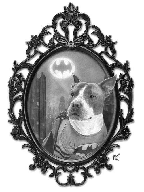 13-Batman-the-Pit-Bull-Matthew-Greskiewicz-Realistic-Graphite-and-Charcoal-Drawings-www-designstack-co