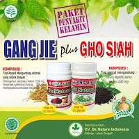 Obat Penyakit Sipilis Wanita Herbal yang Mudah dan Murah
