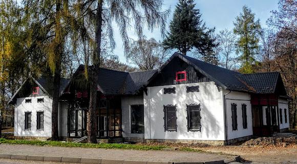 Посёлок Выгода. Дом бывшего лесозаготовителя барона Поппера