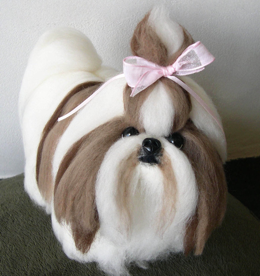 Pet Perawatan Shih Tzu