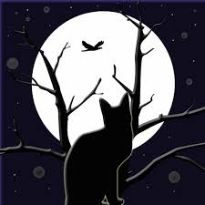 Full moon Halloween Hd Desktop background images and Pictures