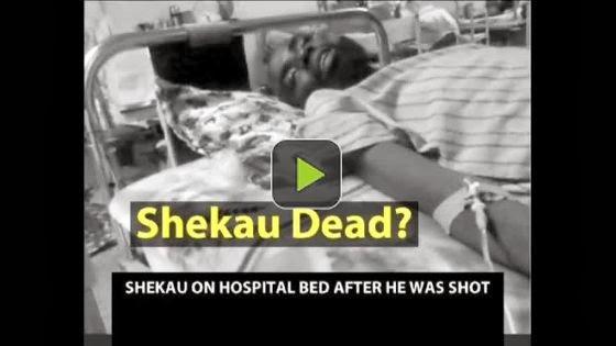 abubakar shekau killed
