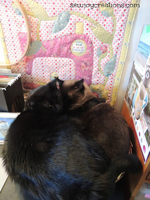 cats in the sewing room basket