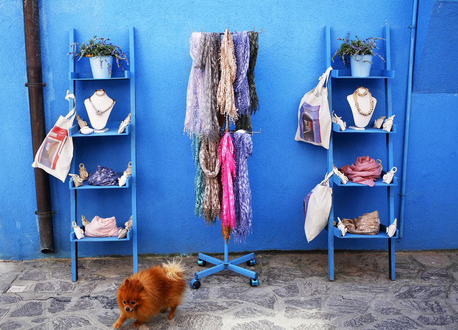 Colourful scarves and a dog in front of a blue wall on the island of Burano, photographer - Katie Currid, Freckle & Fair