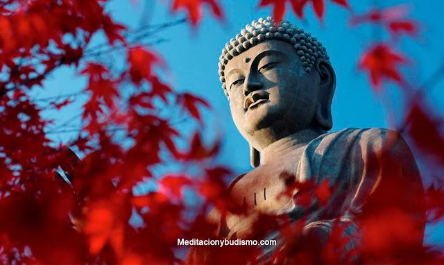 Cosas que no sabes del budismo