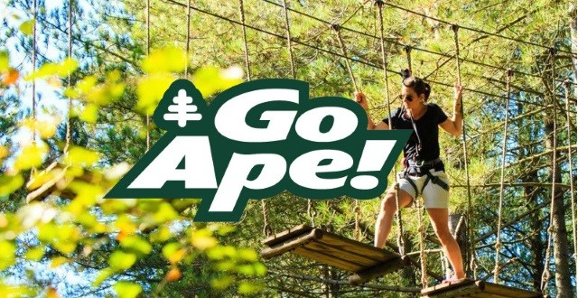 www.goape.co.uk