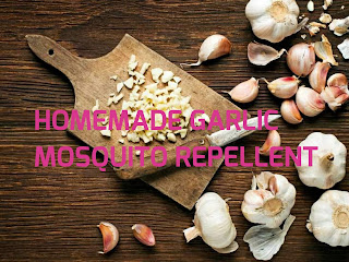 How To Drive Mosquitoes Away With Garlic (Homemade Mosquito Repellent)