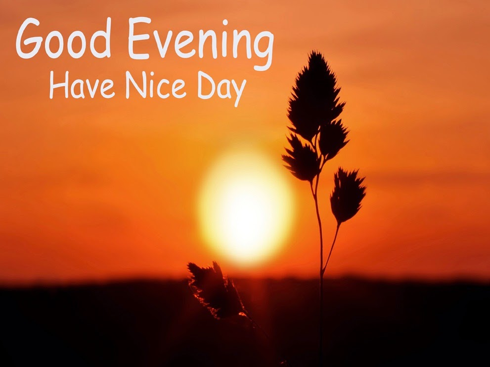 Good Evening Images with HD Wallpaper ~ Latest images Free Download