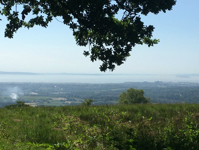 Llwyn-Celyn-whips-an-easy-walk-with-a-view-of Cardiff