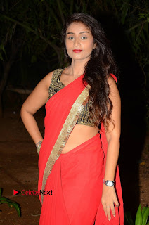 Actress Kiran Chetavani Pictures in Red Saree at Lakshmi Devi Samarpinchu Nede Chudandi Audio Launch  0026.JPG