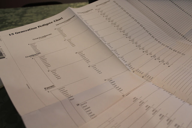 Preserving Your Family History: Documents from Musings of a Museum Fanatic