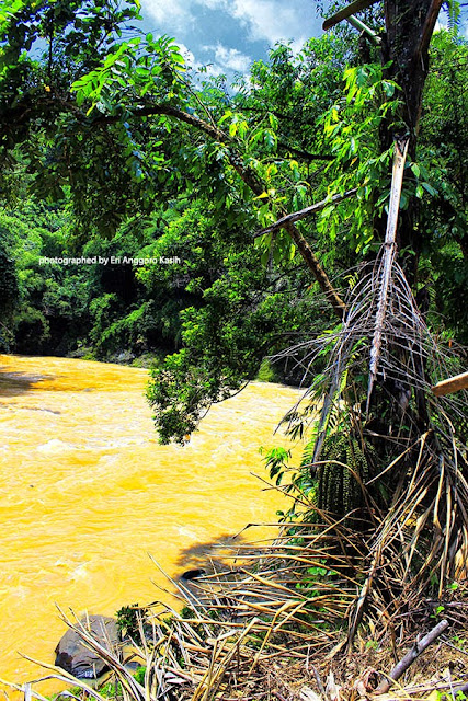 Sisi sungai Citanduy ini cocok untuk berenang apabila kemarau