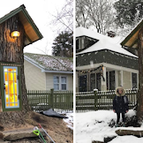 Woman Forced to Remove Dying Tree, Turns It Into Tiny Library Instead «TwistedSifter