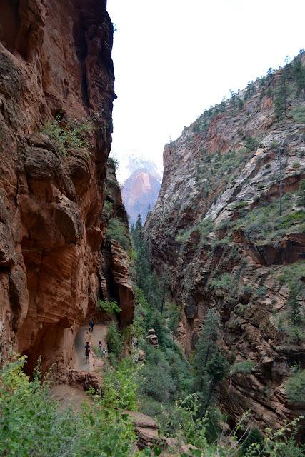 """""""Место, где приземляются Ангелы"""". Национальный парк Зайон. Юта (Angels Landing. Zion National Park, UT)"""