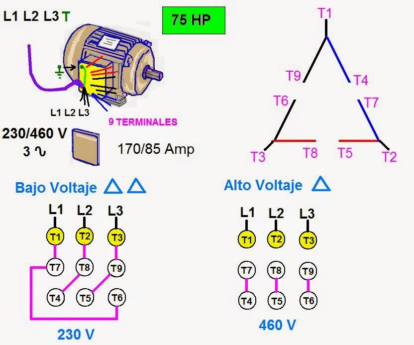 Coparoman Motores El 233 Ctricos Trif 225 Sicos De 9 Terminales