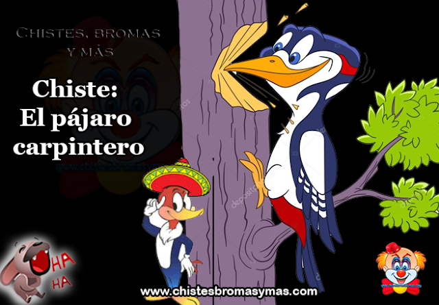 Chiste: El pájaro carpintero, sobre un bosque del sur de México iba volando un pájaro carpintero de Canadá, maravillado ante la hermosura.  De pronto comenzó a oír unos golpes sobre la madera y  también un quejido