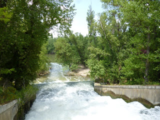 Desembocadura del rio Esgueva en el rio Pisuerga