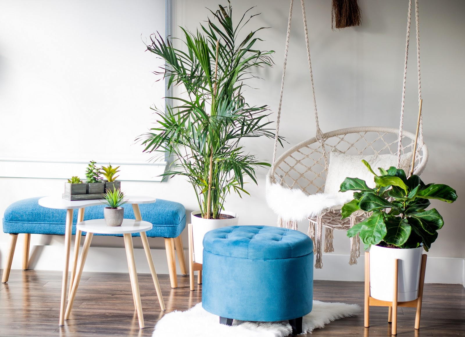 Get Inspired by Plant Home Decor | Oh to Be a Muse